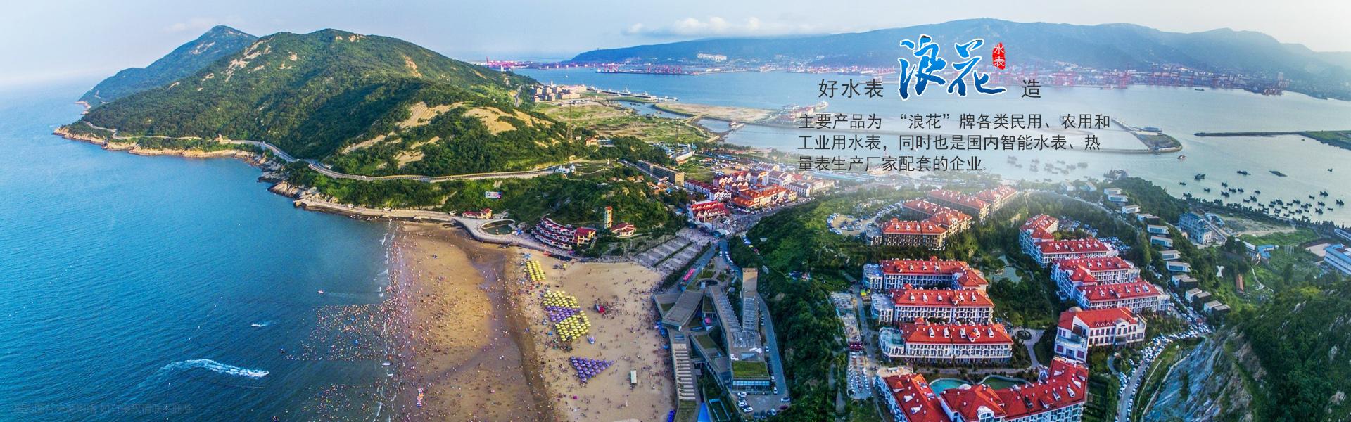 江苏水表厂