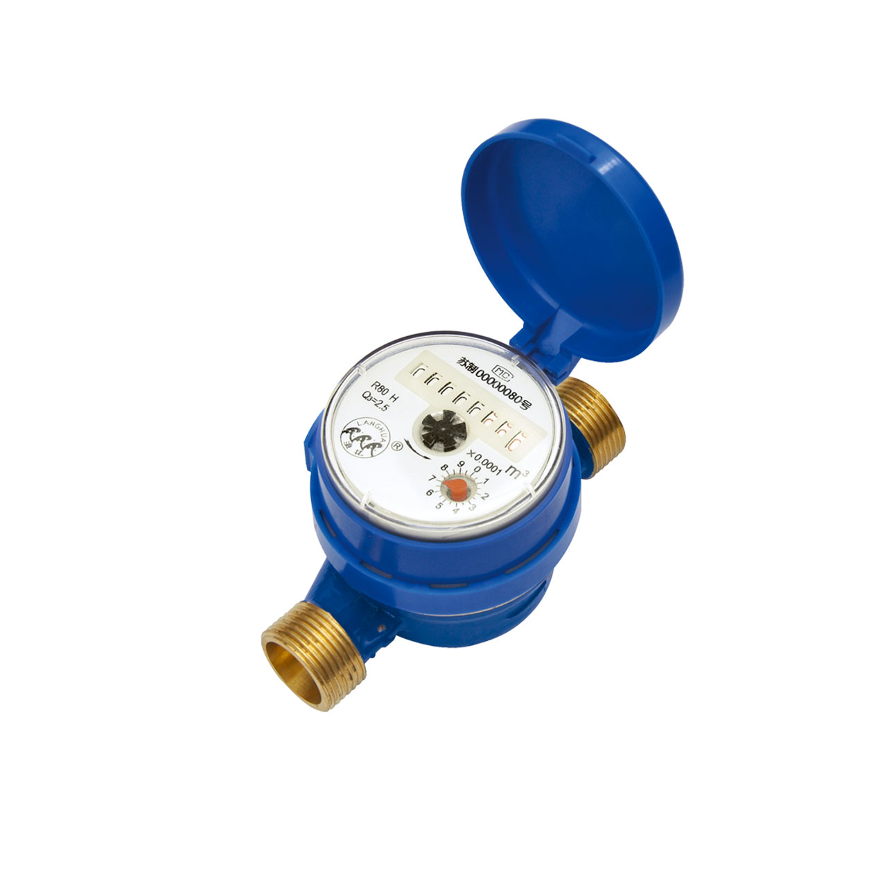 Intelligent water meter